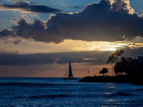 Free stock photo of sunset sailboat