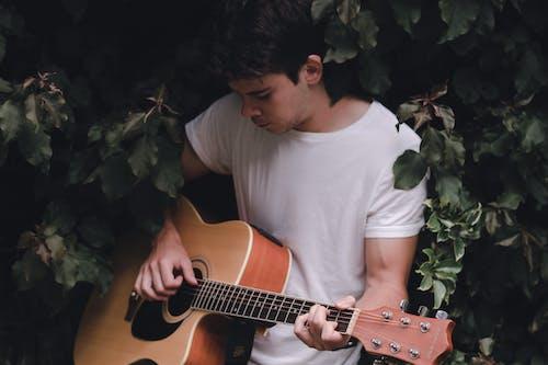 Focused guitarist playing guitar sitting among green leaves
