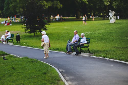 Seniors in the Park