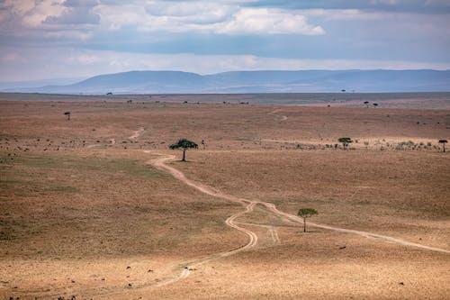 Scenery view of narrow walkways between barren land against ridges under cloudy sky in safari