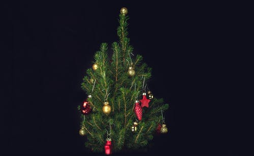 Fir decorated with Christmas baubles against black background