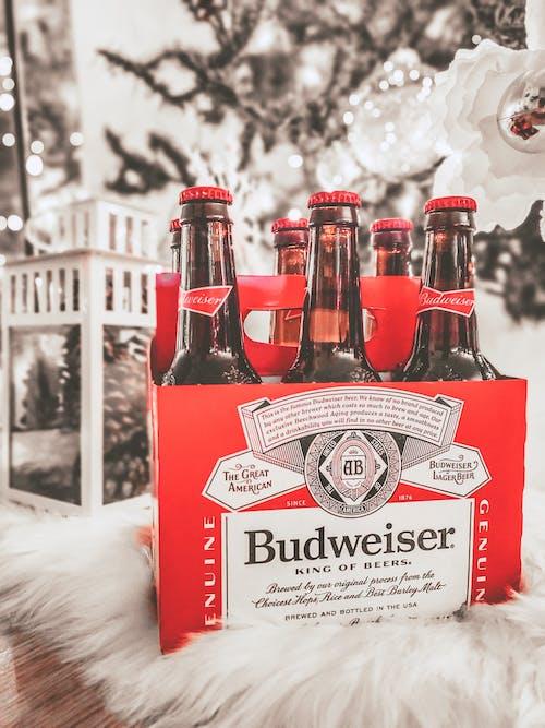 Δωρεάν στοκ φωτογραφιών με budweiser, αλκοόλ, αλκοολούχο ποτό