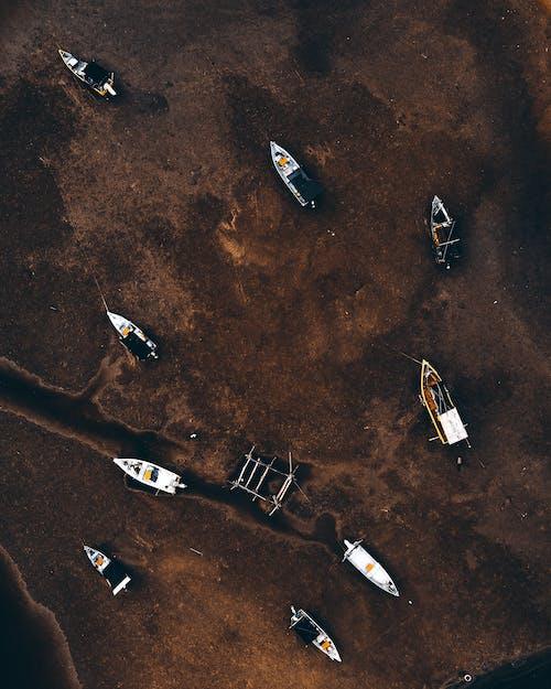 Foto profissional grátis de acidente, aéreo, água