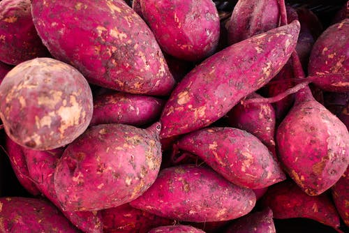 Close Up Photo of Sweet Potatoes