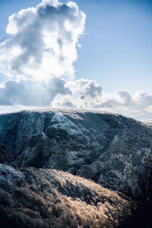 감기, 겨울, 경치, 높은의 무료 스톡 사진