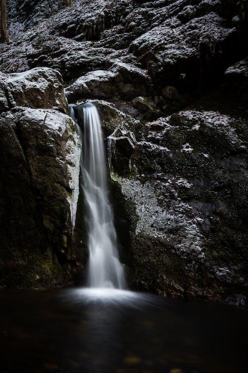 가을, 강, 개울, 경치의 무료 스톡 사진