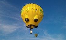 sky, flying, yellow