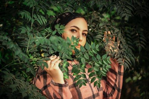 Ilmainen kuvapankkikuva tunnisteilla aikuinen, glamour, ihmiset, kasvikunta