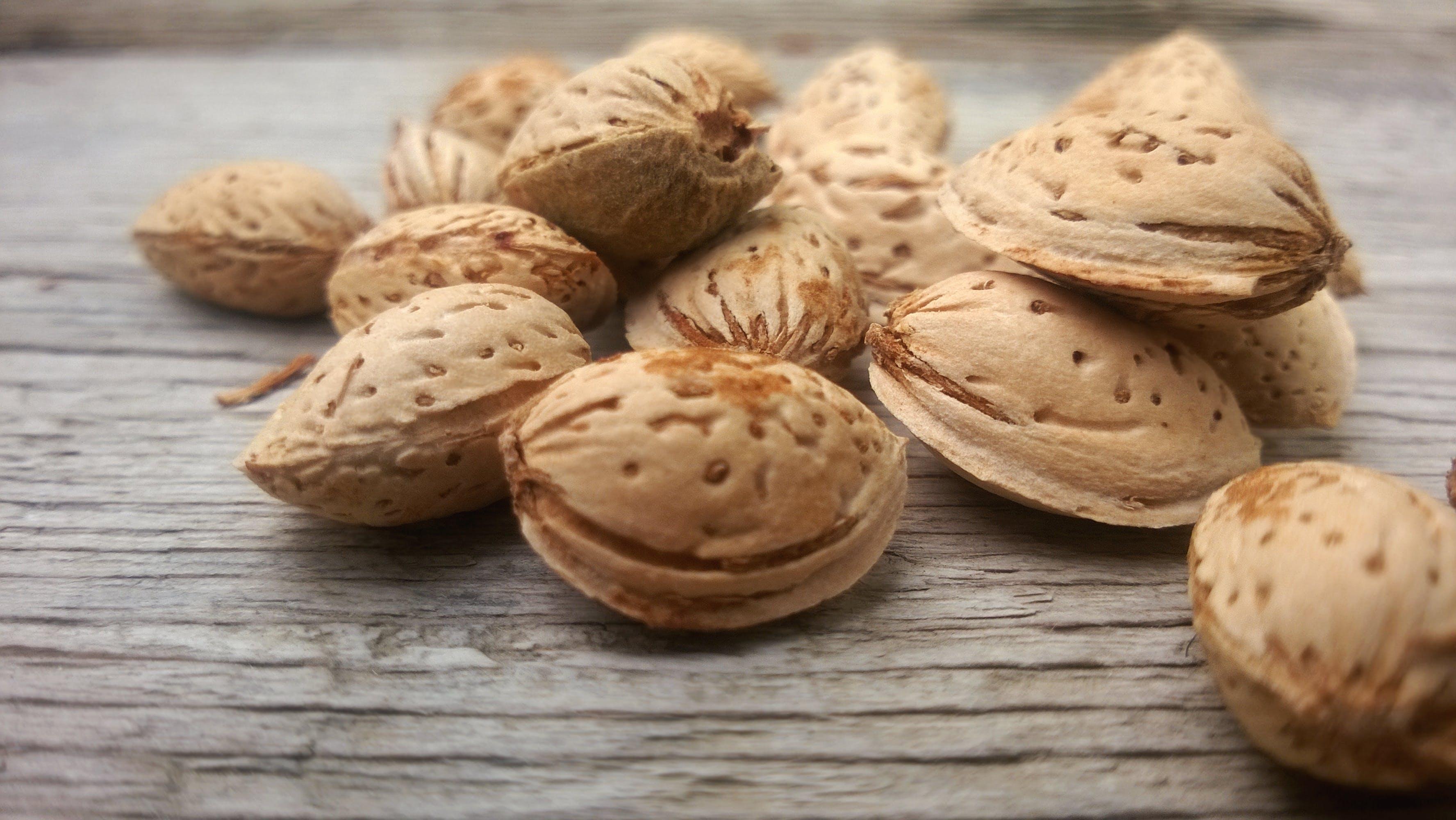 Free stock photo of almonds, big almond, bodom, nature