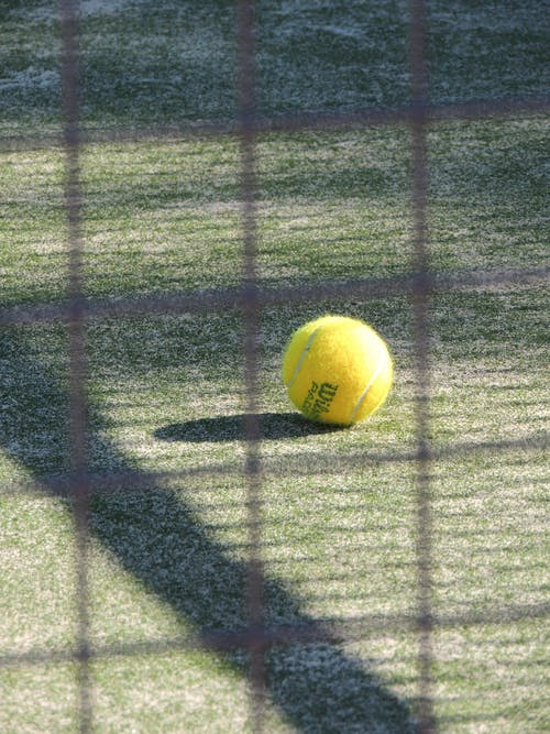 Tennis Ball in Green Grass during Daytime