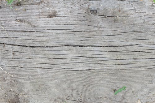 Free stock photo of surface, texture, wood