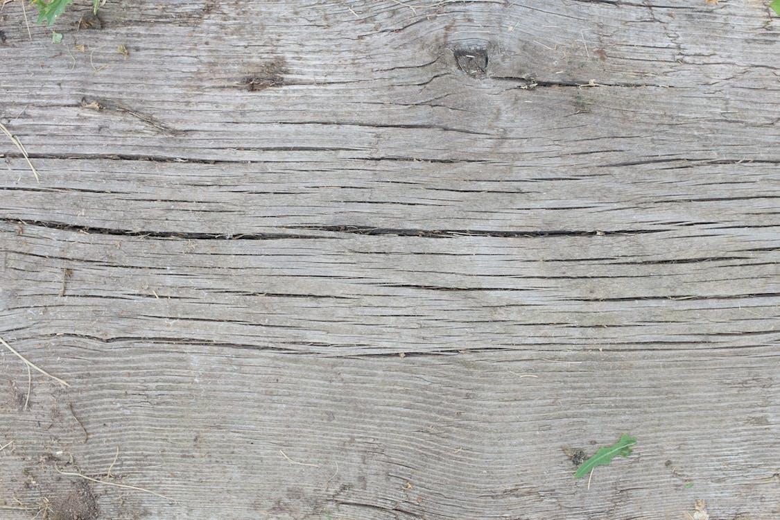 Photos gratuites de bois, surface, texture