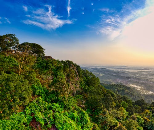 Scenic landscape of vibrant green lush trees growing in forest on mountain slope located in tropical country under cloudy sunset sky