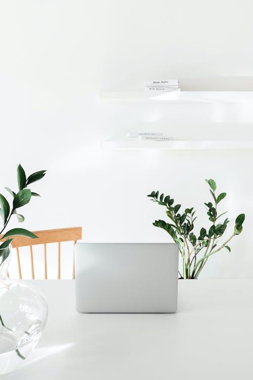 Imagine de stoc gratuită din acasă, afaceri, apartament