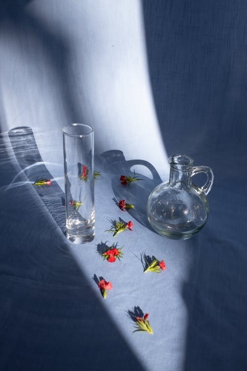 From above of transparent vases on fabric with shadows and blossoming flower buds in sunlight