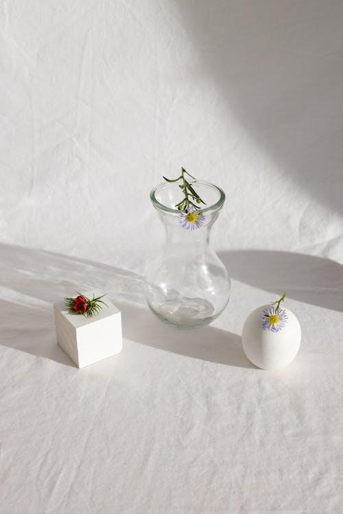 คลังภาพถ่ายฟรี ของ กระจก, กลิ่นหอม, กลีบดอกไม้, การจัดดอกไม้