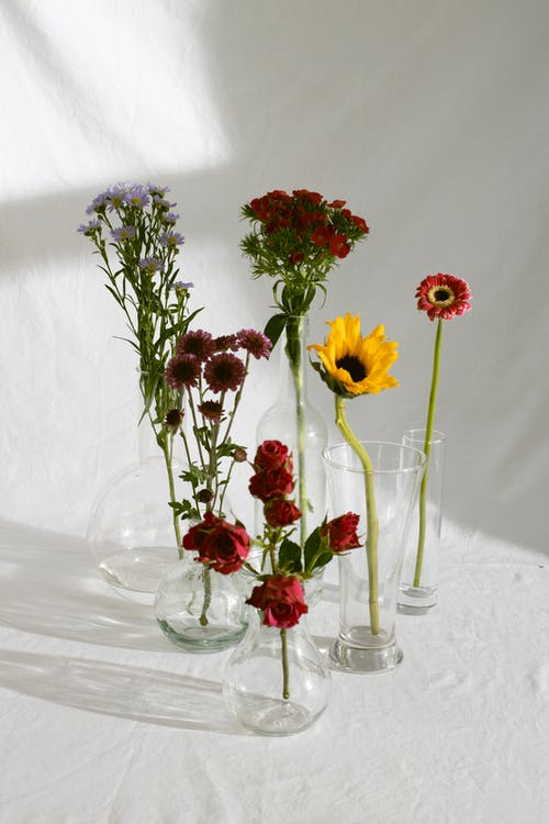 Composition of various delicate flowers in glass vases placed on white tablecloth