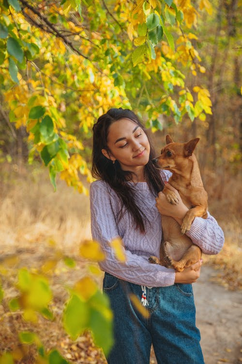 Charming female in casual clothes holding cute puppy while standing under lush tree in autumn forest