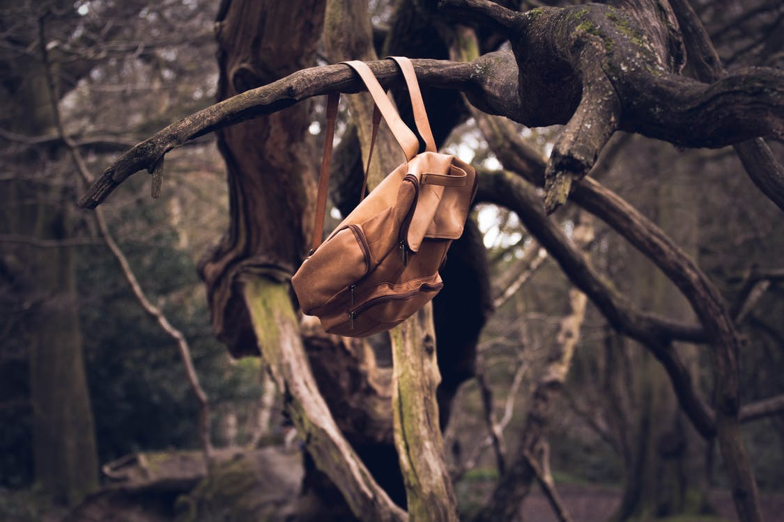 Brown Knapsack Hanging from a Branch