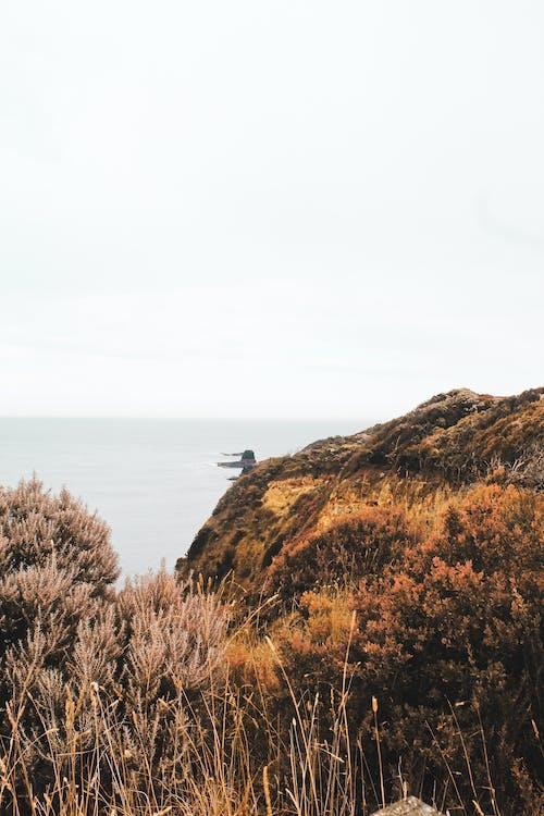 Δωρεάν στοκ φωτογραφιών με ακτή, απόγευμα, αυγή