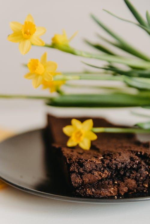 Bunga Kuning Di Kue Coklat Coklat