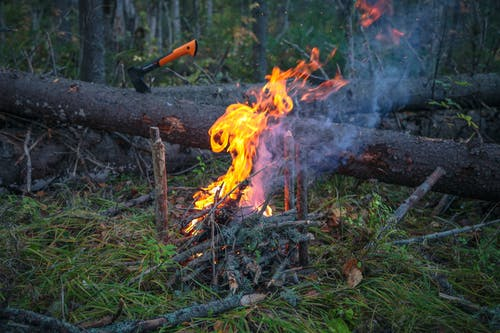 Burning bonfire with smoke against axe in forest