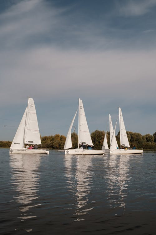 Modern boats sailing in lake during yacht racing