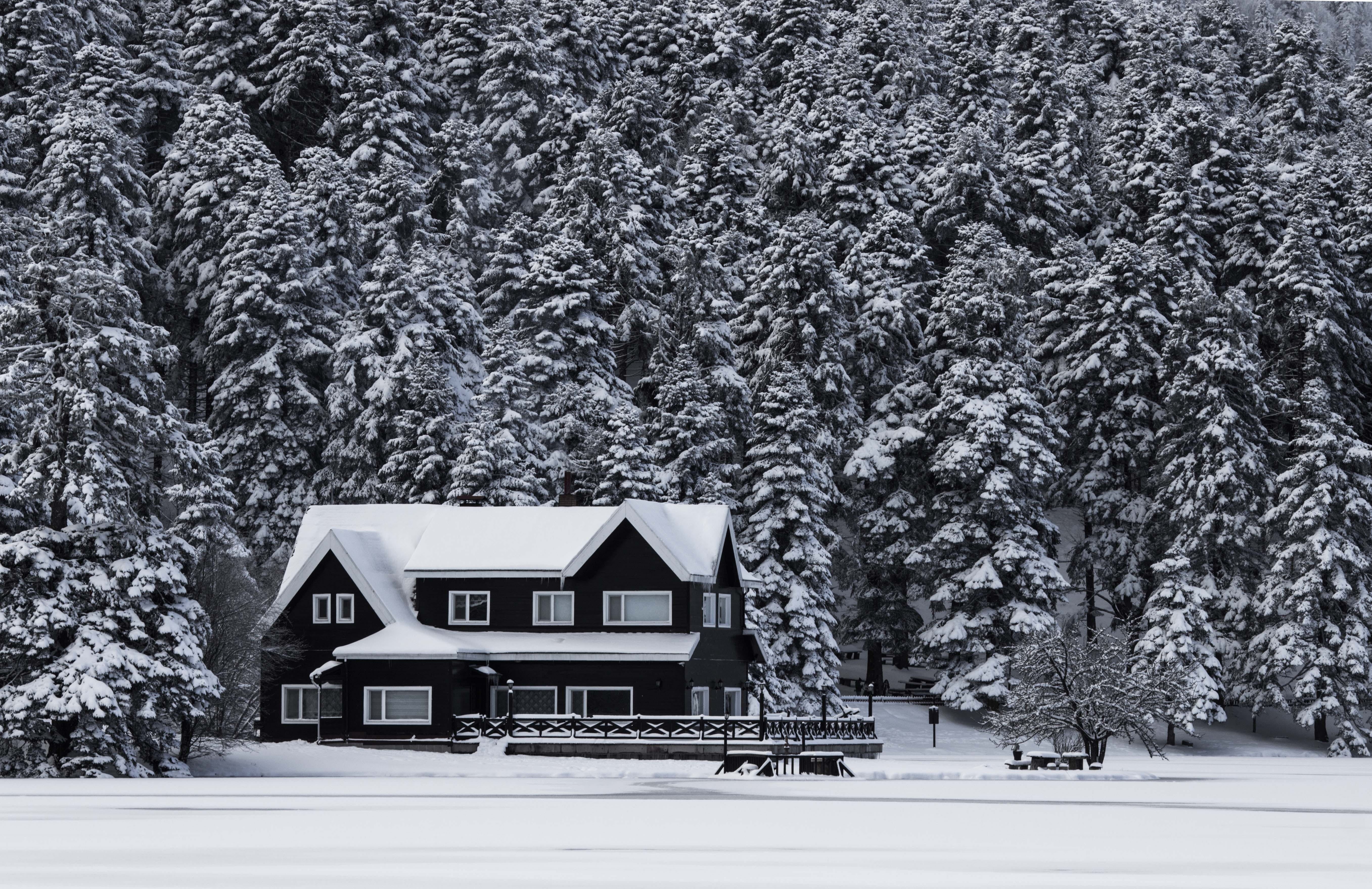 Snowy House Grayscale Photo