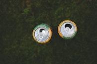 drink, grass, drinking