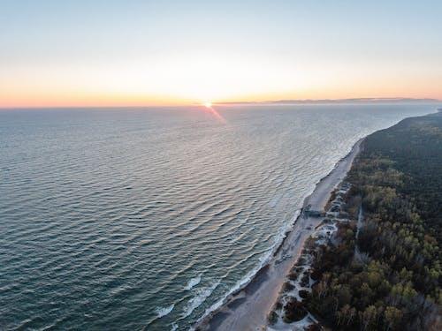 Fotos de stock gratuitas de bosque, dron, en la playa