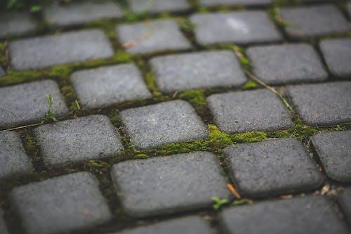 Základová fotografie zdarma na téma chodník, dlažba, dlažební kostky, kameny