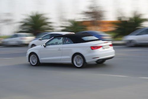 คลังภาพถ่ายฟรี ของ การขับขี่, ขนส่ง, ขับรถ, ขาว