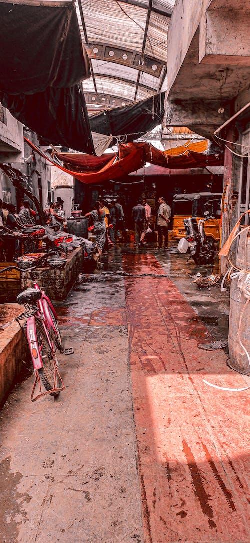 Free stock photo of crowd, fish market, indian market