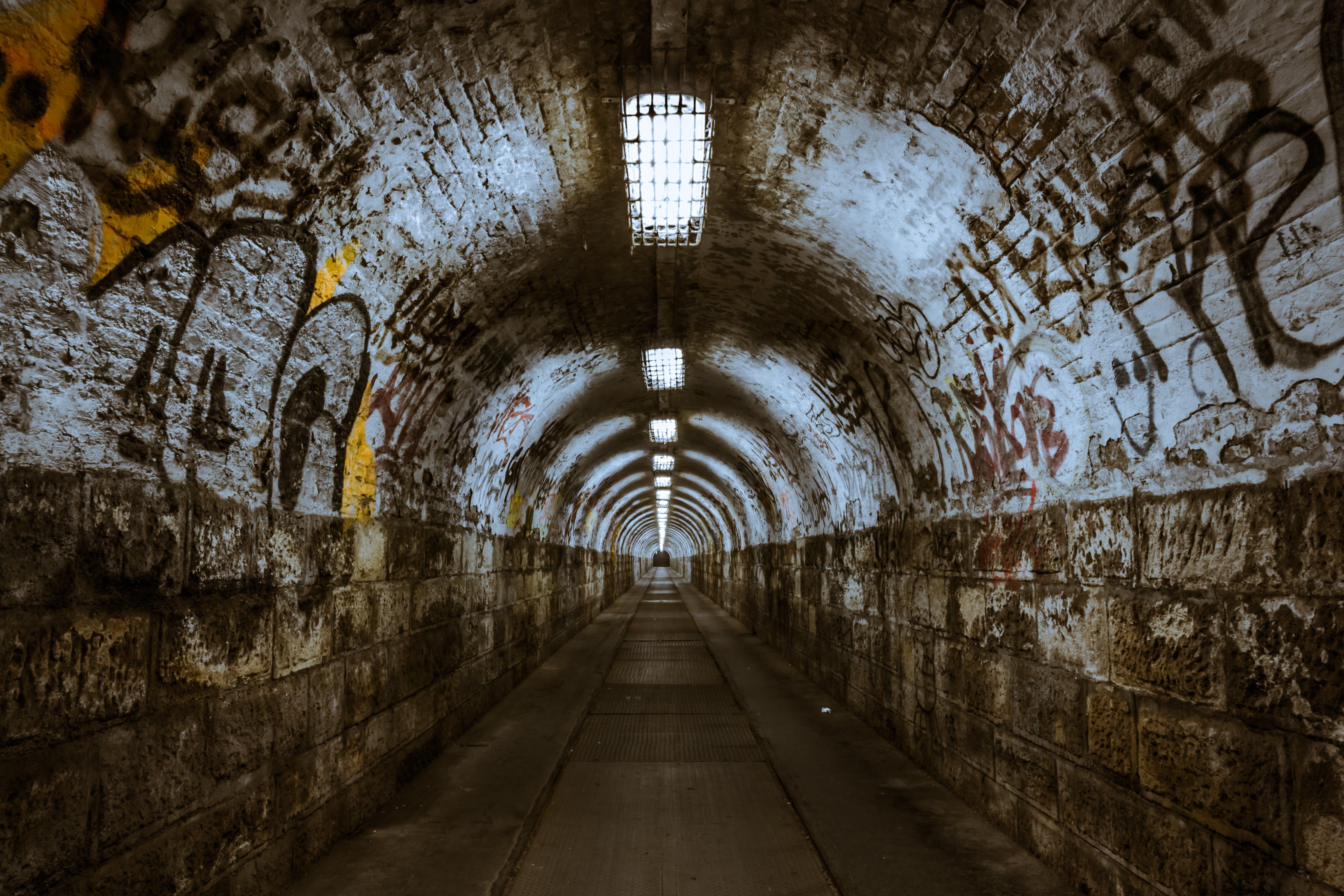 Foto profissional grátis de calçamento, graffiti, luzes, parede de ladrilhos