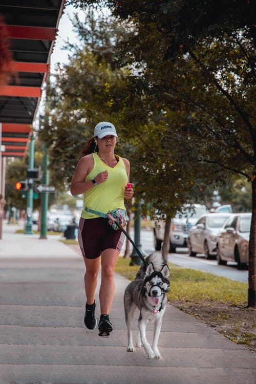 Woman in Sports Wear Running with Gray and White Siberian Husky