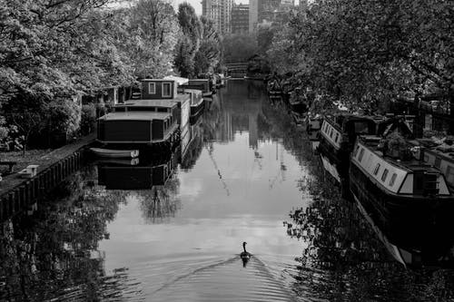 Black and White Photography of Canal with Floating Houses