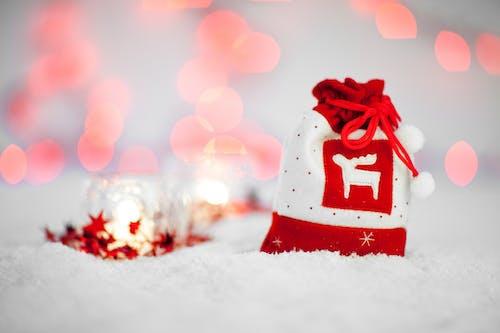 Kostnadsfri bild av årstid, dekorativ, firande, jul