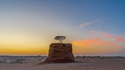 Scenic sunset over desert valley with tree growing on rocky formation