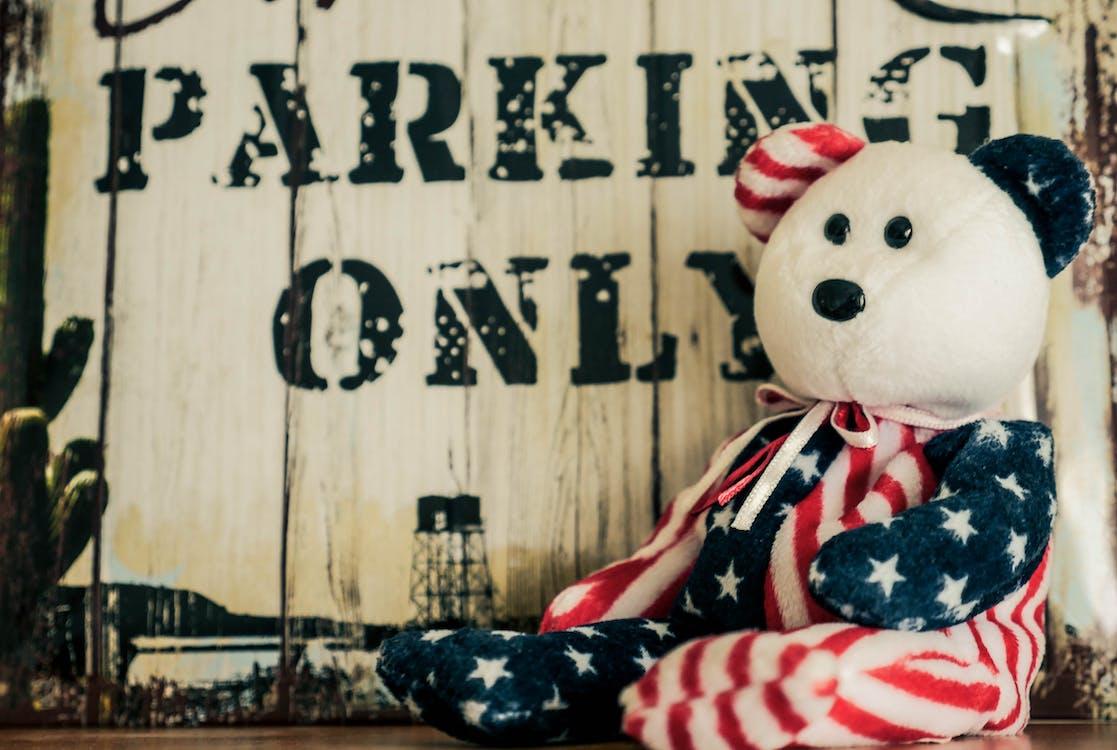 Free stock photo of bear, cute, stuffed toy