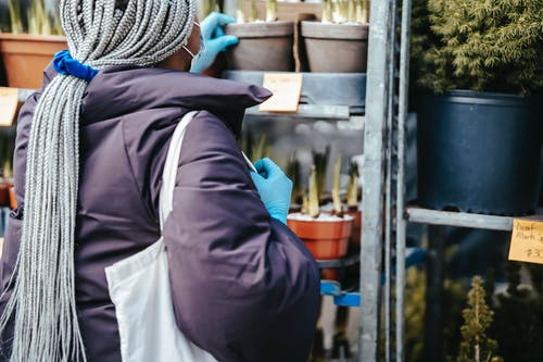 Anonymous African American female picking plants in market