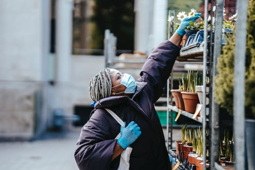 Side view of adult black woman in mask and gloves wearing warm clothes standing in market and choosing potted plants in daytime