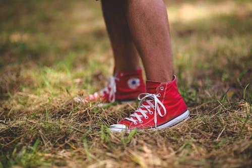 Základová fotografie zdarma na téma chodidla, conversky, nohy, tenisky