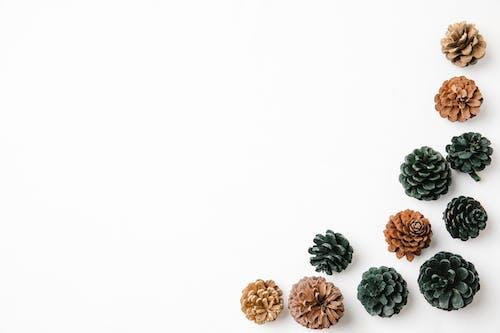 棕色和綠色的花卉飾品