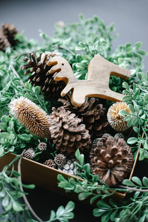 Christmas decorations with pine cones at home