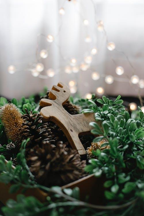 Ornamento De árvore De Madeira Marrom Em Planta Verde
