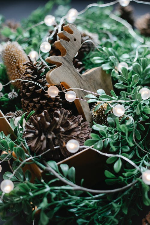 Glowing garland on wooden toy and pine cones near plant at Christmas celebration