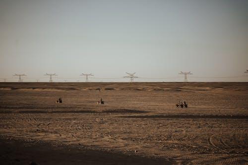 Δωρεάν στοκ φωτογραφιών με αγρόκτημα, Αίγυπτος, άμμος