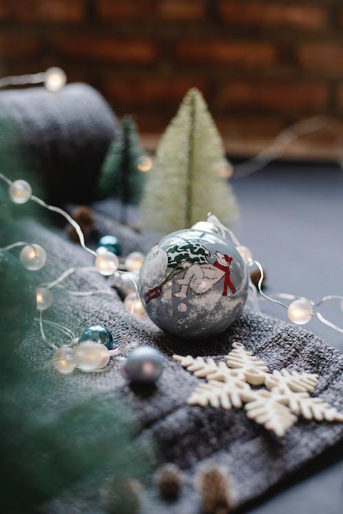 Christmas decorations on plaid near fir tree