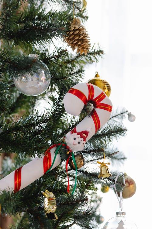 árvore De Natal Verde Com Enfeites E Luzes De Corda