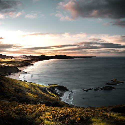 反射, 天性, 太陽 的 免费素材图片
